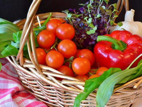 Calendario dei lavori da fare nell'orto e nel giardino